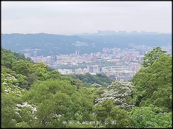 土城桐花公園-3_050.jpg
