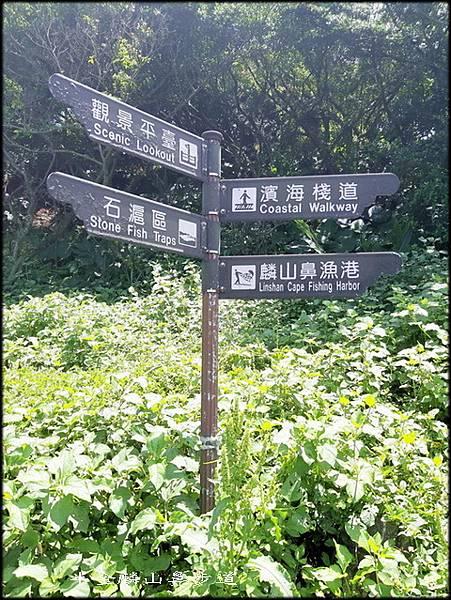 麟山鼻步道-3_056.jpg