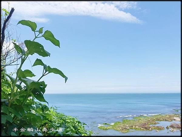 麟山鼻步道-3_065.jpg