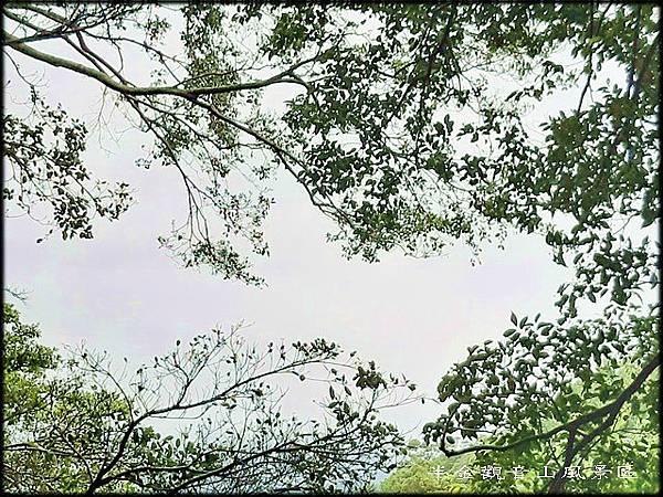 雨天的觀音山風景區~012.jpg