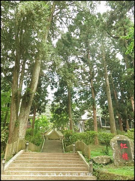 溪頭森林遊樂區_003.jpg