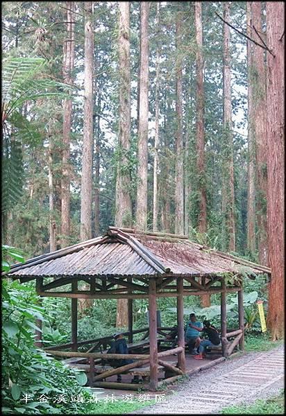 溪頭森林遊樂區_014.jpg