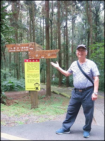 溪頭森林遊樂區_018.jpg