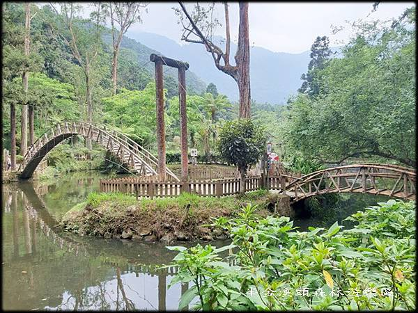 溪頭森林遊樂區-3_010.jpg