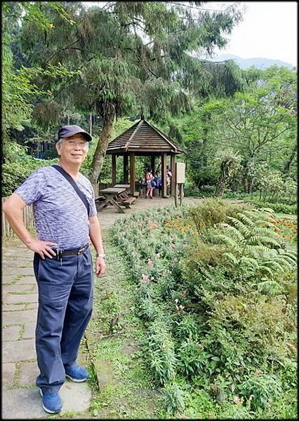 溪頭森林遊樂區-3_033.jpg