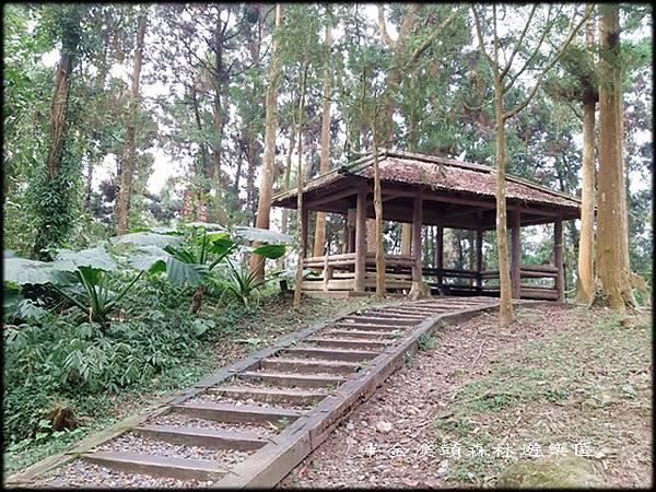 溪頭森林遊樂區-3_037.jpg