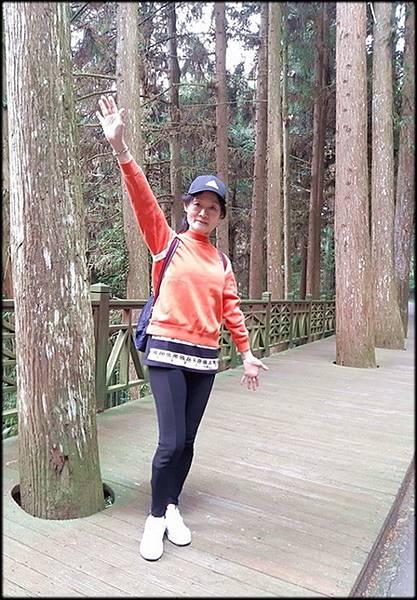 溪頭森林遊樂區-3_040.jpg