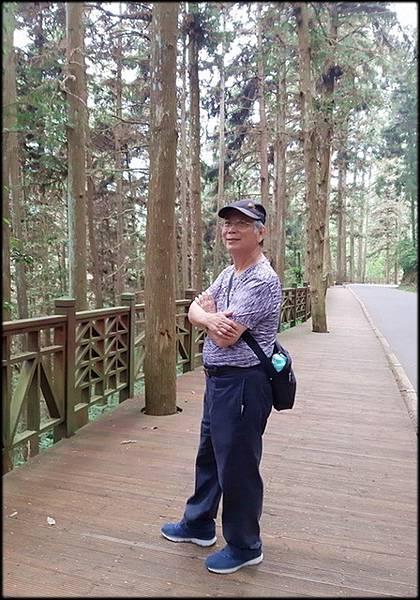 溪頭森林遊樂區-3_045.jpg