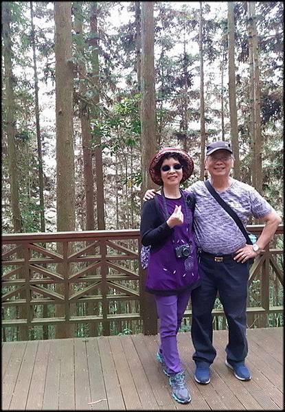 溪頭森林遊樂區-3_046.jpg
