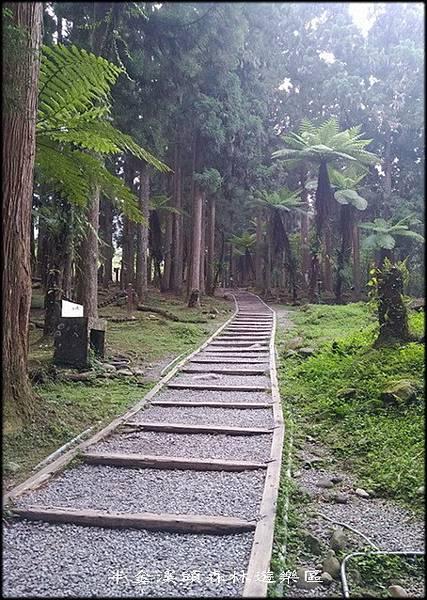 溪頭森林遊樂區-1_001.jpg