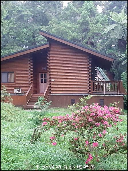 溪頭森林遊樂區-4_004.jpg