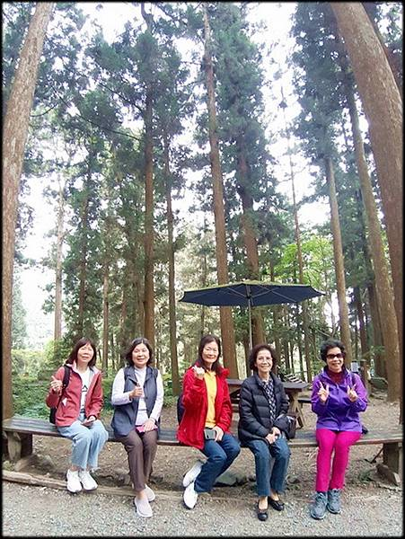 溪頭森林遊樂區-4_020.jpg