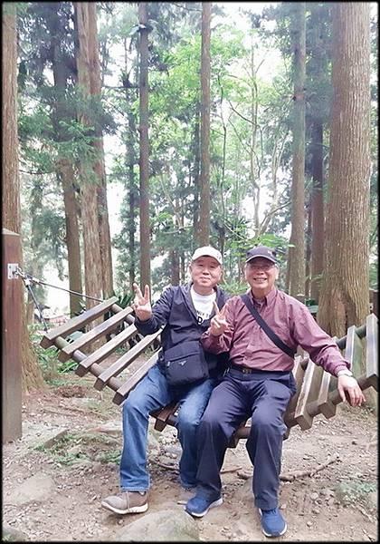 溪頭森林遊樂區-4_015.jpg