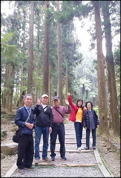 溪頭森林遊樂區-4_023.jpg