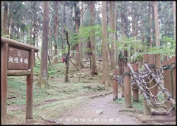 溪頭森林遊樂區-4_032.jpg