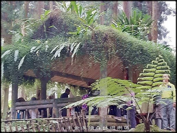 溪頭森林遊樂區-4_027.jpg