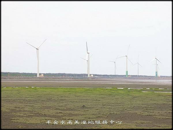 清水高美溼地服務中心_012.jpg