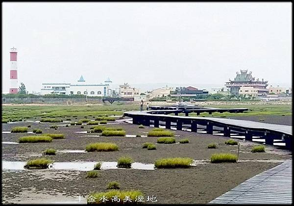清水高美溼地-1_001.jpg