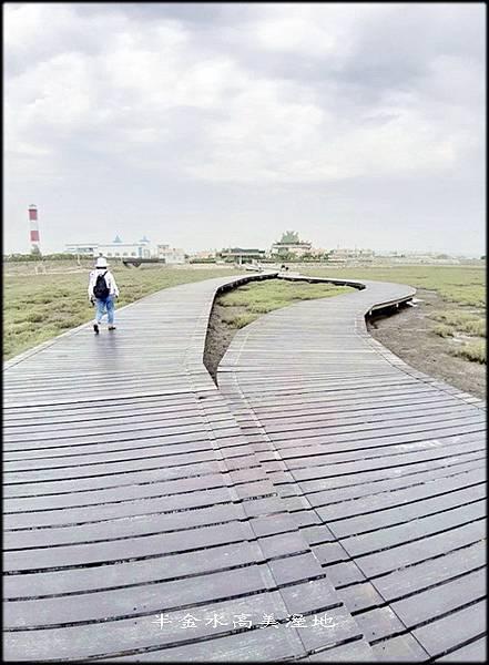 清水高美溼地-3_064.jpg
