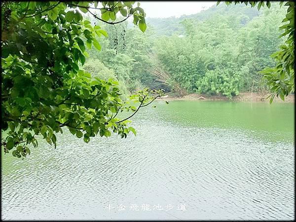 飛龍池步道_035.jpg