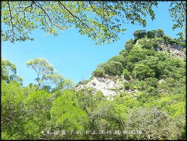 貴子土亢水土保持教學園區_014.jpg