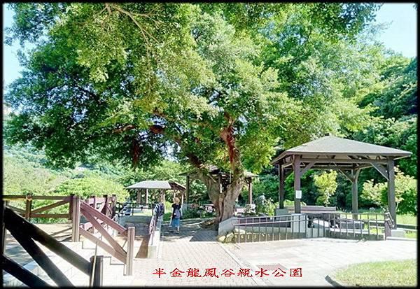 龍鳳谷親水公園-1_001.jpg
