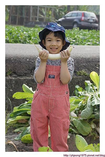 小姪女-微笑蘿蔔.jpg