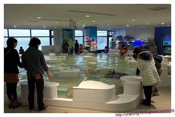海遊館-環境乾淨.jpg