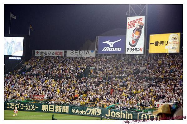 甲子園球場-外野.jpg