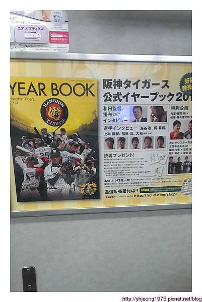 甲子園球場-電車廣告.jpg