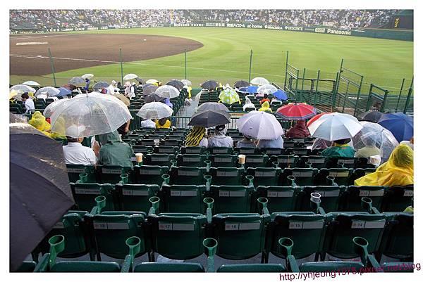 甲子園球場-內野座椅2.jpg