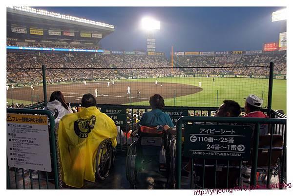 甲子園球場-身障區.jpg