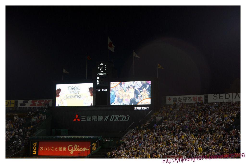 甲子園球場-看板活動2.jpg