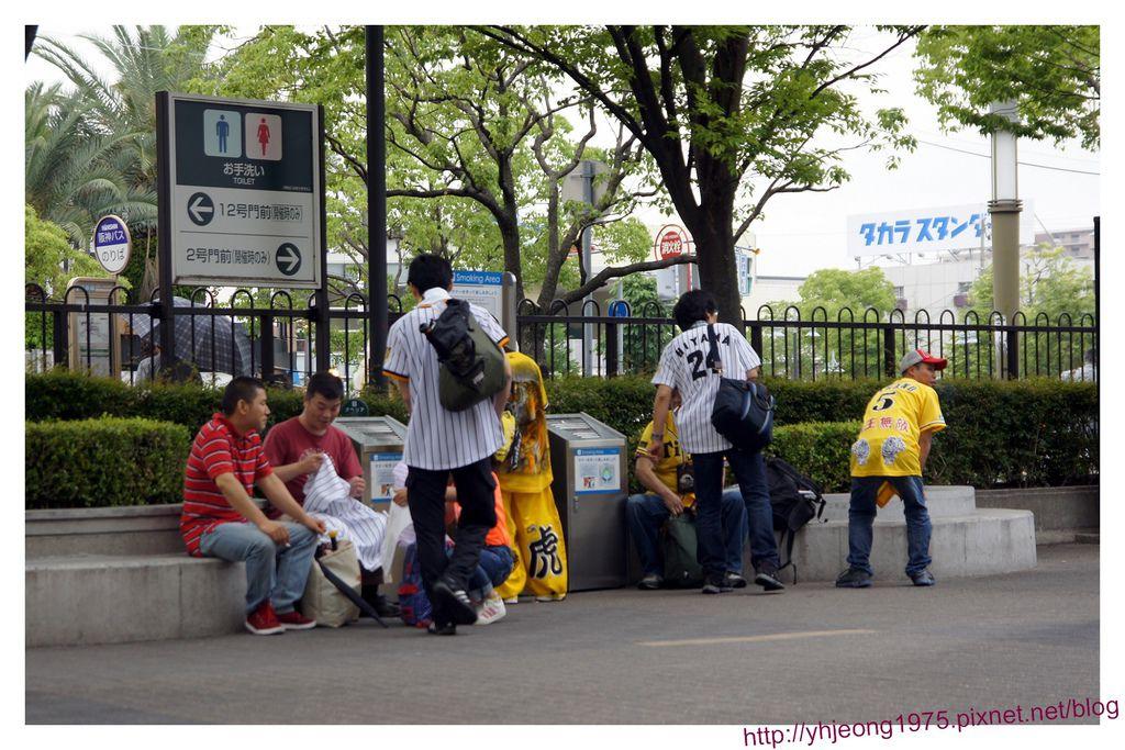 甲子園球場-球迷2.jpg