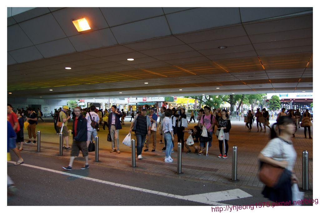 甲子園球場-球迷4.jpg