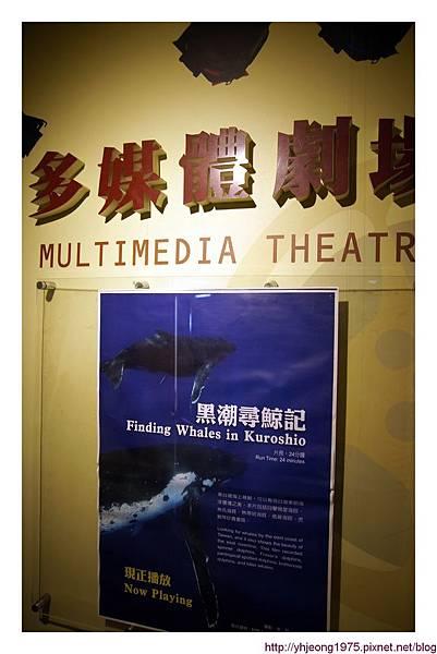 陽明高雄海洋探索館-多媒體劇場.jpg