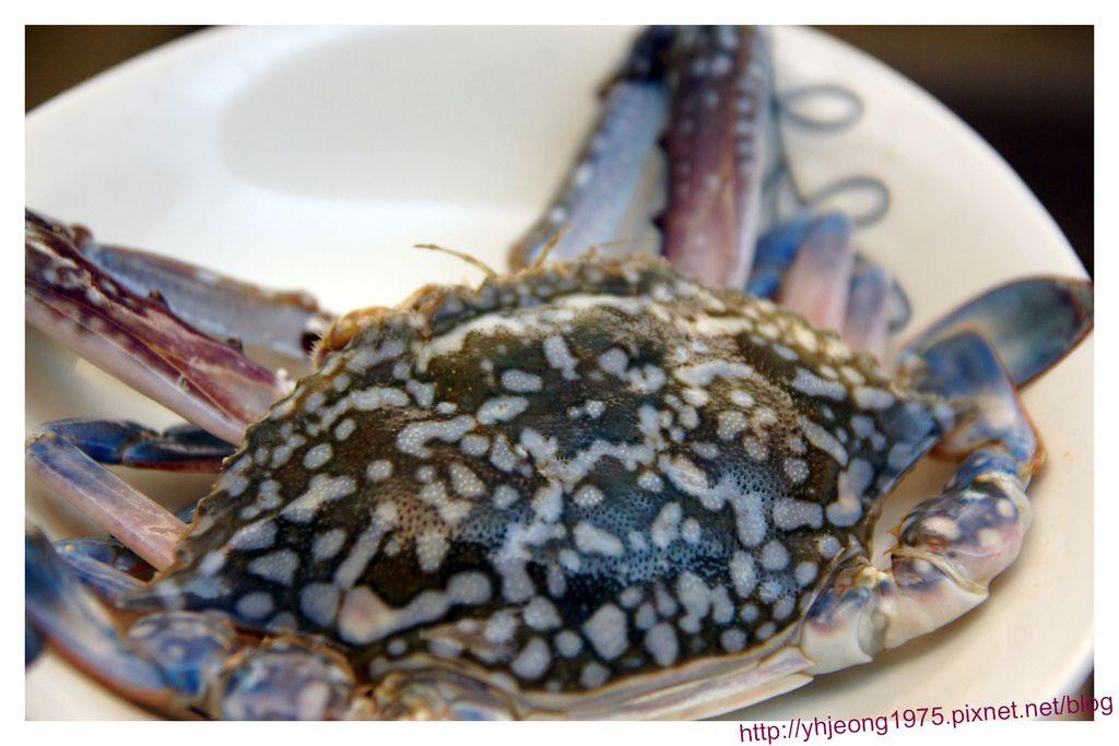 太食記-藍鑽蟹.jpg
