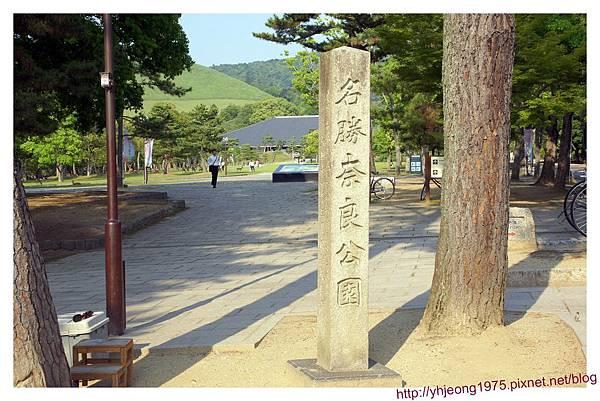 東大寺-奈良公園.jpg