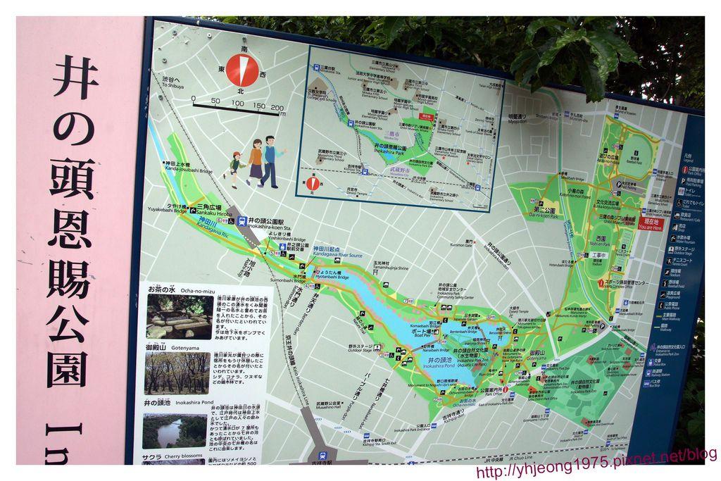 井之頭-公園.jpg