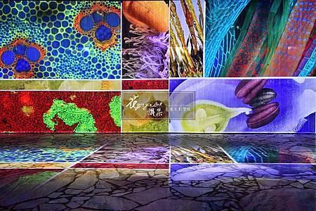 """‖創造非凡‖ 期待許久的 """"台中世界花卉博覽會"""" 11%2F3正式開幕, 花雅集也參與其中, 在台中外埔園區的智農館, 孕育出不同風格的三個空間Art Deco, 智農館"""