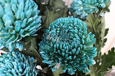 ‖流光溢彩‖ 重重的花瓣配上清冽的顏色, 宛若經過完美切工後, 散發出閃耀光芒的藍綠寶石。 ----------------------- 延伸美學: www.yia.c