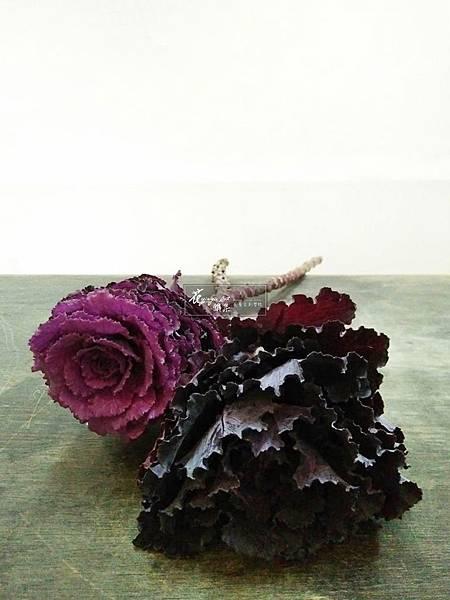‖視吃的高麗菜‖ 視覺美的高麗菜,因外形似極嬌媚牡丹,因而喚名「葉牡丹」 逢低溫隨著品種的差別, 長大後的葉片, 會幻化成紫色、黃、米...,為設計增添許多可能性。 --