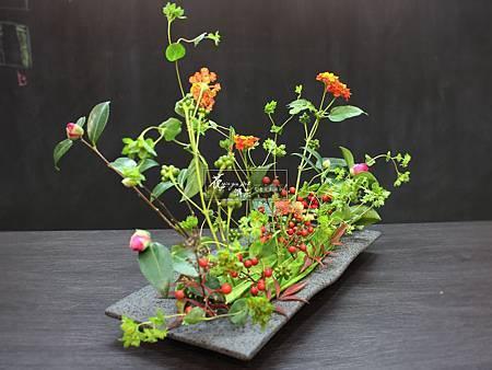 ‖躍動‖ 纖細柔美的花枝 從層層排列的葉子中 伸展跳躍出来,展現植物旺盛的生命力道 ---------------------------------- Desi
