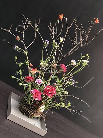 ‖盤中花園‖ 樹枝與頑石的擁抱 為花木提供最自然環保的支點 柔美的翠珠 嬌豔的玫瑰 線條雅致的寒梅 ...... 分布錯落有致 組成一个美麗的生態花園 ------