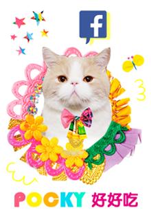 pocky  fb icon copy 圓邊