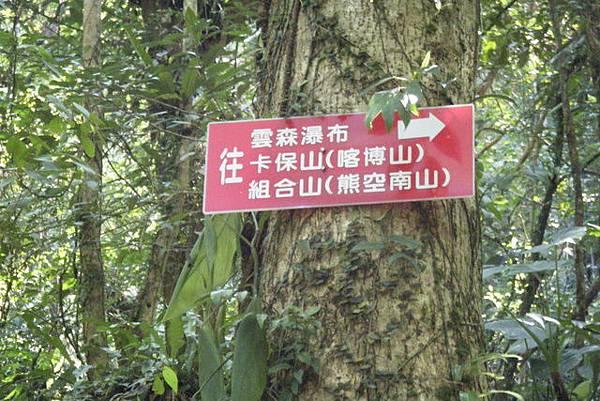 三峽雲森瀑布1.jpg