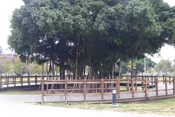 衛武營都會公園2.JPG