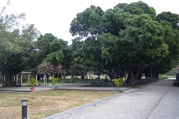 衛武營都會公園5.JPG