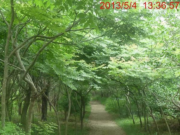 春夏鳳凰山2