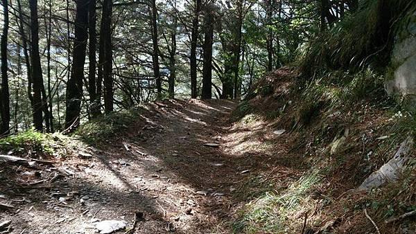 能高越嶺步道5